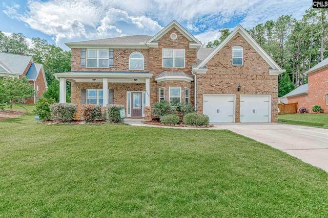 193 Hope Springs Road, Lexington, SC 29072 (MLS #495472) :: EXIT Real Estate Consultants