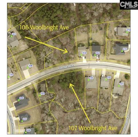 107 Woolbright Avenue, Chapin, SC 29036 (MLS #495553) :: The Olivia Cooley Group at Keller Williams Realty