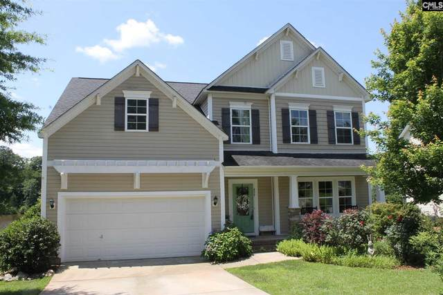 459 Gauley Drive, Columbia, SC 29212 (MLS #495569) :: EXIT Real Estate Consultants