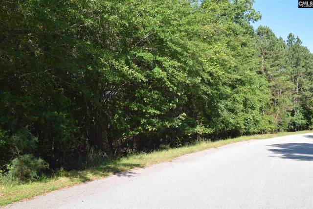 S/O Stoneridge Road, Chapin, SC 29036 (MLS #495586) :: The Neighborhood Company at Keller Williams Palmetto