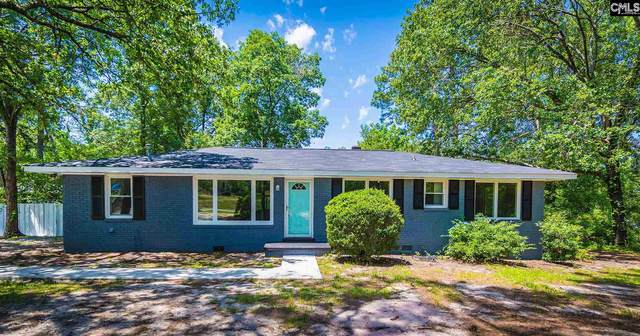 2852 Fish Hatchery, West Columbia, SC 29172 (MLS #495654) :: The Meade Team