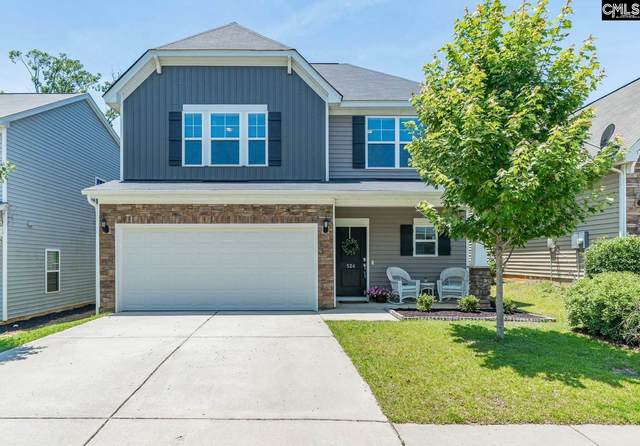 524 Slices Way, Chapin, SC 29036 (MLS #495686) :: Troy Ott Real Estate LLC