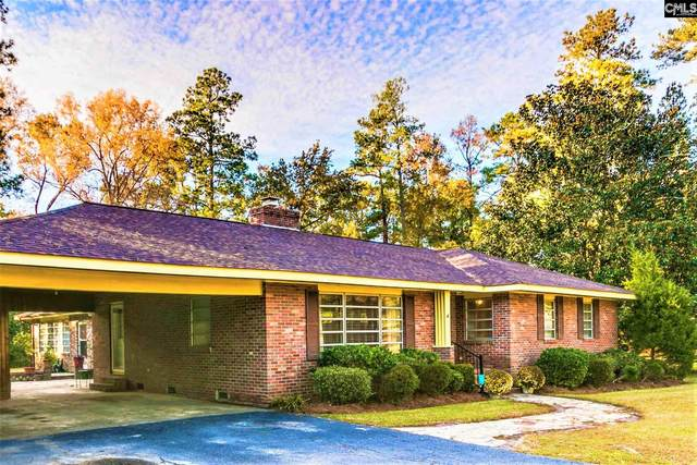 2167 Columbia Road, Orangeburg, SC 29118 (MLS #495754) :: The Meade Team