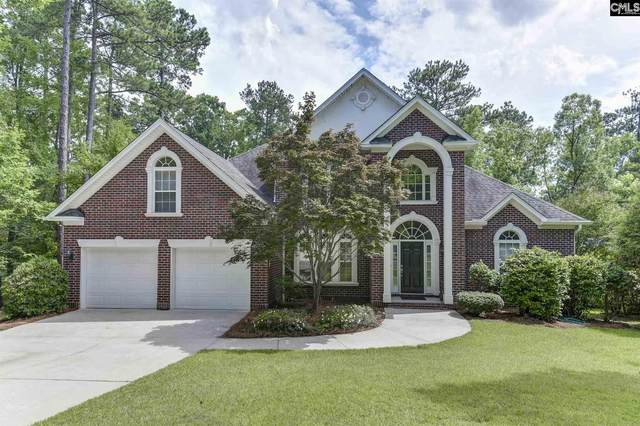 209 Lookout Pointes Drive, Chapin, SC 29036 (MLS #495884) :: The Neighborhood Company at Keller Williams Palmetto