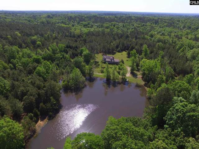301 Westwoods Drive, Chapin, SC 29036 (MLS #495893) :: The Meade Team
