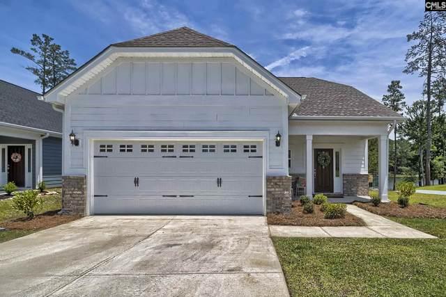 348 Amalfi Drive, Chapin, SC 29036 (MLS #495912) :: Home Advantage Realty, LLC