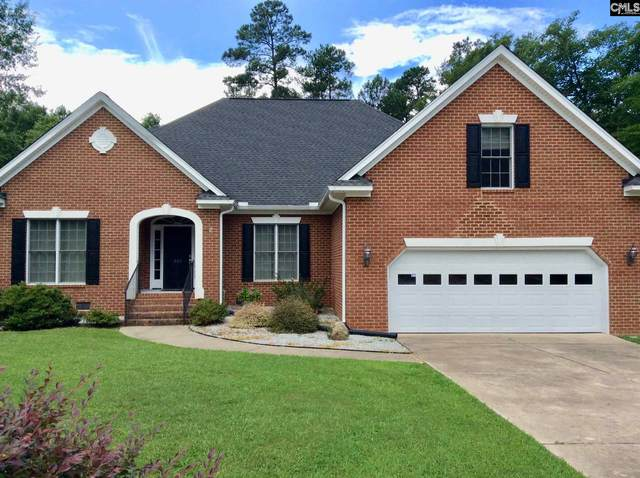221 Daymark Drive, Chapin, SC 29063 (MLS #496449) :: EXIT Real Estate Consultants