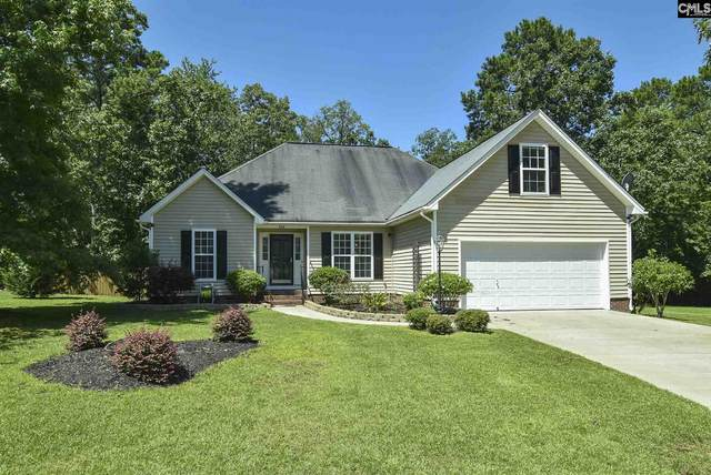 206 Hodson Hall Drive, Columbia, SC 29229 (MLS #496677) :: EXIT Real Estate Consultants