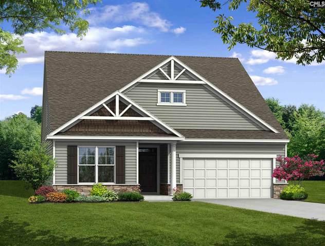 119 Highgate Lane, Chapin, SC 29036 (MLS #496801) :: EXIT Real Estate Consultants