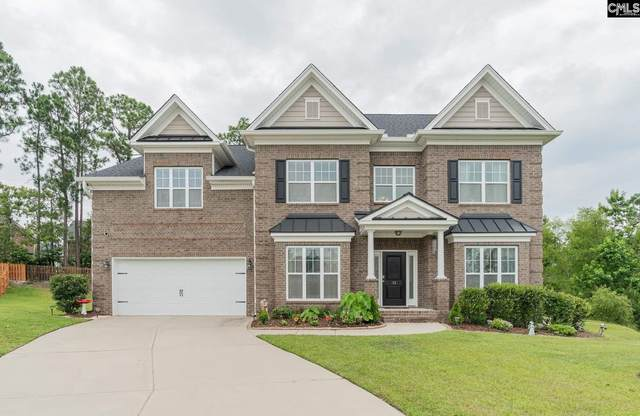 13 Overview Court, Columbia, SC 29229 (MLS #496826) :: NextHome Specialists