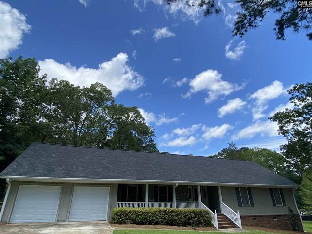 99 Middle Creek Road, Irmo, SC 29063 (MLS #497226) :: Home Advantage Realty, LLC