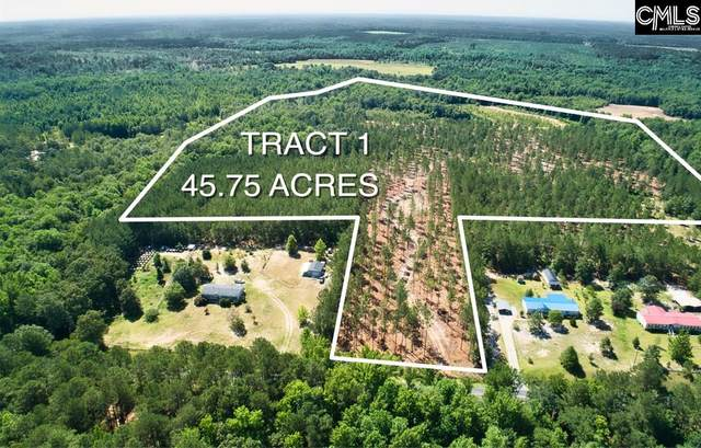 Tract 1 Cheraw Road, Cassatt, SC 29032 (MLS #497259) :: EXIT Real Estate Consultants