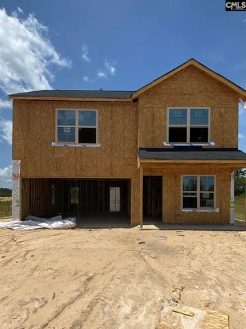 237 Freeman Drive 184, Gaston, SC 29053 (MLS #497360) :: EXIT Real Estate Consultants