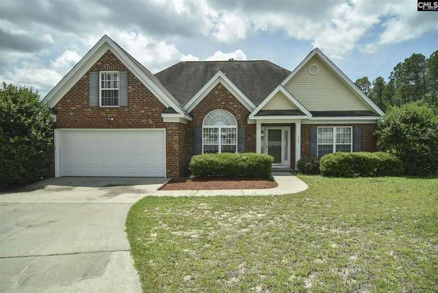 209 Timber Chase Court, Lexington, SC 29073 (MLS #497433) :: Home Advantage Realty, LLC