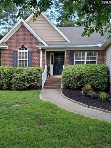 307 Delaine Woods Drive, Irmo, SC 29063 (MLS #497641) :: EXIT Real Estate Consultants
