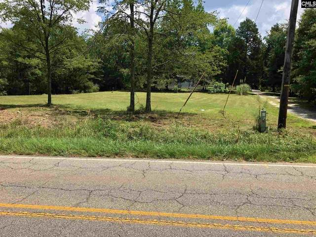 2615 Wessinger Road, Chapin, SC 29036 (MLS #497690) :: The Latimore Group