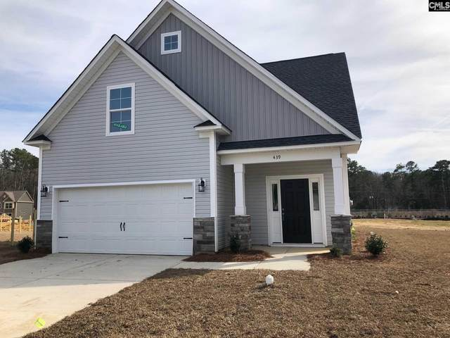 439 Glen Arven Court, Chapin, SC 29036 (MLS #497692) :: EXIT Real Estate Consultants