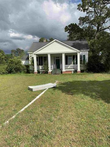 143 Edmund Avenue, Bishopville, SC 29010 (MLS #497700) :: EXIT Real Estate Consultants