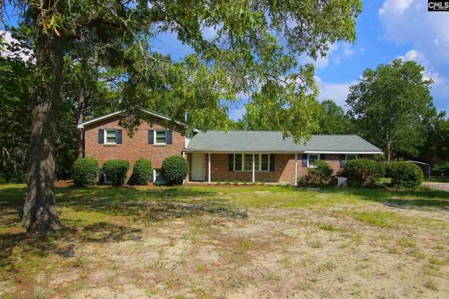 2325 Old Satchelford Road, Columbia, SC 29223 (MLS #497706) :: Home Advantage Realty, LLC