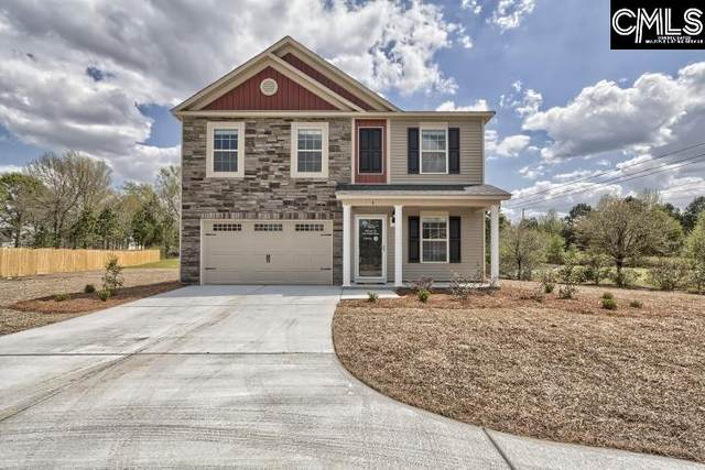 312 Arcadia Court, Chapin, SC 29036 (MLS #497856) :: EXIT Real Estate Consultants