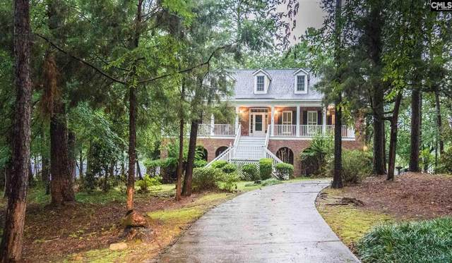 520 Caro Lane, Chapin, SC 29036 (MLS #497933) :: EXIT Real Estate Consultants
