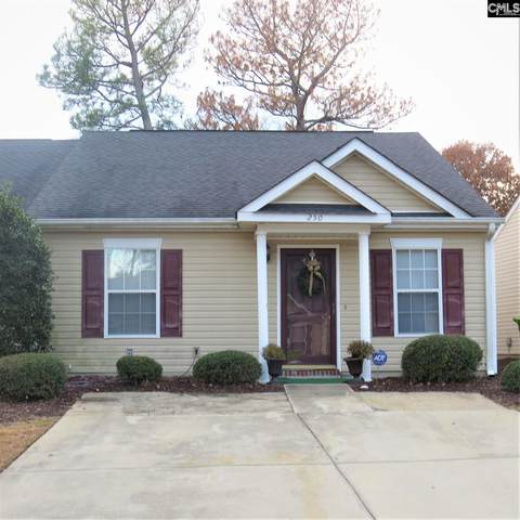 250 Philmont Drive, Columbia, SC 29223 (MLS #497959) :: The Olivia Cooley Group at Keller Williams Realty