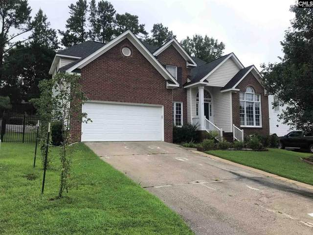 276 Newpark Place, Columbia, SC 29212 (MLS #498059) :: The Meade Team