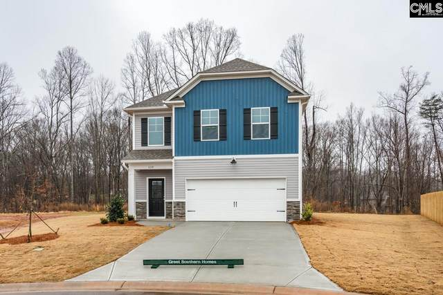 74 Apple Tree Court, Columbia, SC 29223 (MLS #498071) :: NextHome Specialists