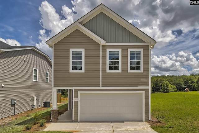 167 Bickley Manor Court, Chapin, SC 29036 (MLS #498220) :: Resource Realty Group