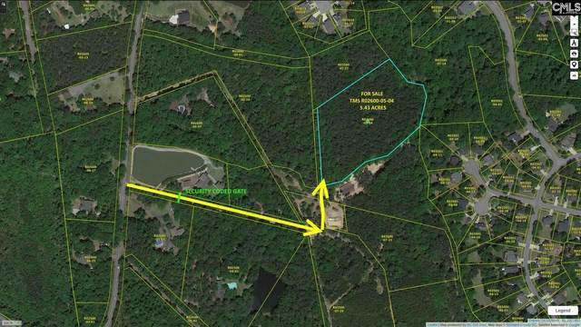0 East Of Julius Richardson Drive, Irmo, SC 29063 (MLS #498231) :: Realty One Group Crest