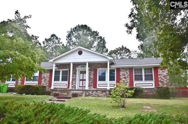 520 Vega Drive, Columbia, SC 29223 (MLS #498250) :: EXIT Real Estate Consultants