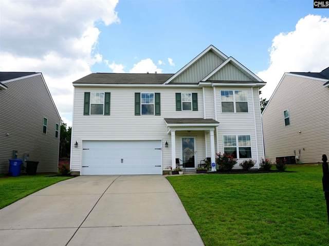 244 Allans Mill Drive, Columbia, SC 29223 (MLS #498283) :: EXIT Real Estate Consultants