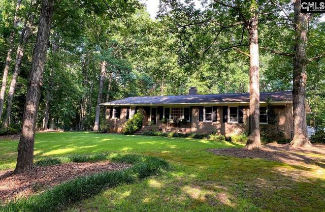 102 Steeplechase Road, Lexington, SC 29072 (MLS #498440) :: Home Advantage Realty, LLC