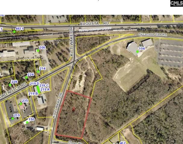 0 Kitti Wake Drive, Lexington, SC 29073 (MLS #498499) :: Home Advantage Realty, LLC