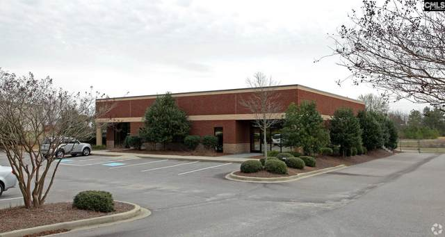 475 Industrial Drive, Lexington, SC 29072 (MLS #498545) :: Home Advantage Realty, LLC