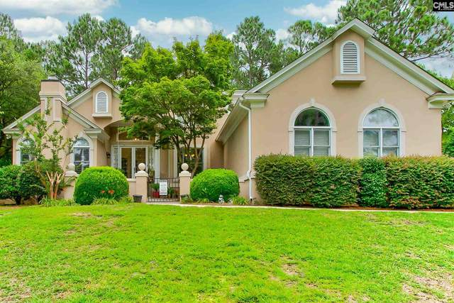 209 Aiken Hunt Circle, Columbia, SC 29223 (MLS #498802) :: Home Advantage Realty, LLC
