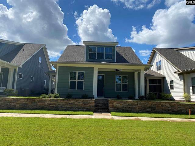 233 Coldwater Crossing, Lexington, SC 29072 (MLS #498904) :: NextHome Specialists
