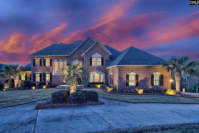 217 Mariannas Court, Lexington, SC 29072 (MLS #499204) :: Home Advantage Realty, LLC