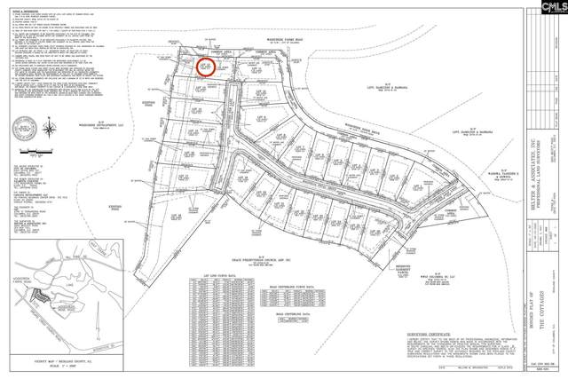 200 Sapphire Gem (Lot 12) Lane, Elgin, SC 29045 (MLS #499724) :: EXIT Real Estate Consultants