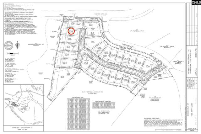 204 Sapphire Gem (Lot 13) Lane, Elgin, SC 29045 (MLS #499726) :: EXIT Real Estate Consultants