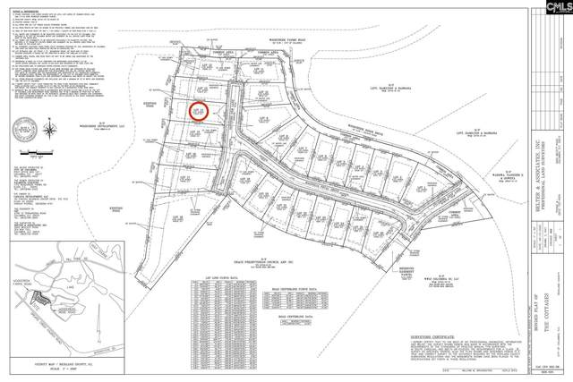 208 Sapphire Gem (Lot 14) Lane, Elgin, SC 29045 (MLS #499727) :: EXIT Real Estate Consultants