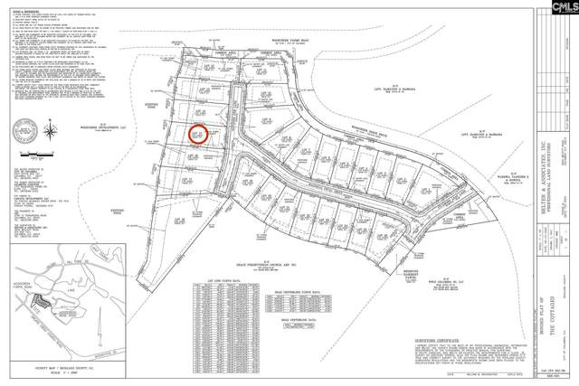 212 Sapphire Gem (Lot 15) Lane, Elgin, SC 29045 (MLS #499729) :: EXIT Real Estate Consultants