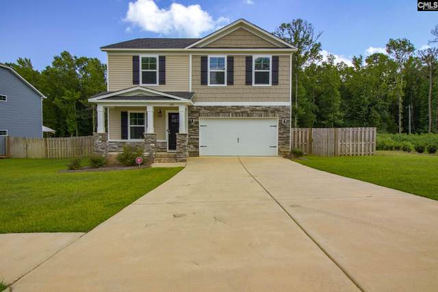 129 Sunsation Drive, Chapin, SC 29036 (MLS #499751) :: NextHome Specialists
