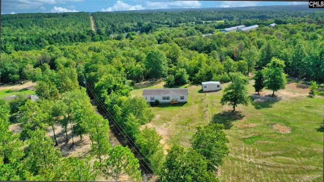 249 Hayride Road, Gilbert, SC 29054 (MLS #499775) :: EXIT Real Estate Consultants