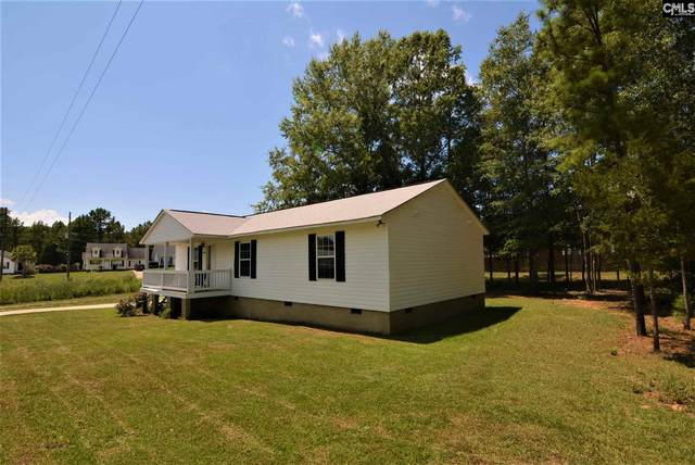 540 Old Bush River Road, Chapin, SC 29036 (MLS #499915) :: The Latimore Group