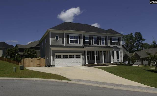 104 Avalon Court, Chapin, SC 29036 (MLS #499925) :: The Latimore Group