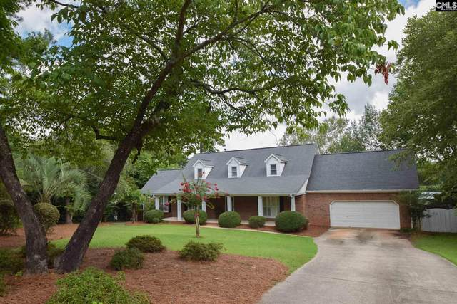 434 Highwater Court, Chapin, SC 29036 (MLS #499945) :: The Latimore Group