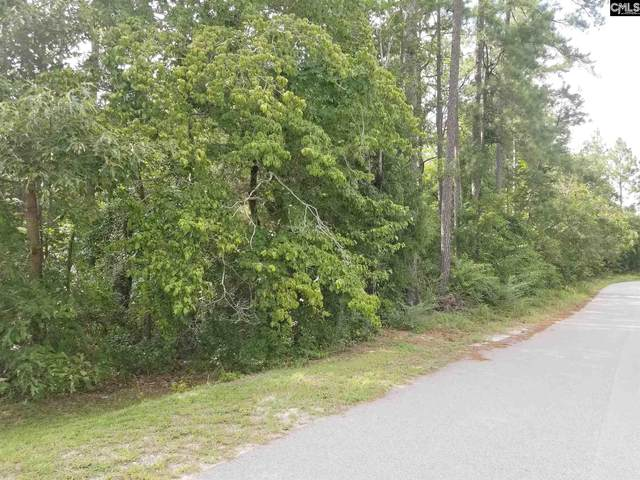 0 Sandy Lane, West Columbia, SC 29172 (MLS #499962) :: NextHome Specialists
