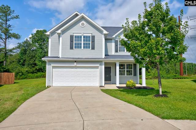 285 Black Pine Court, Lexington, SC 29073 (MLS #500062) :: Home Advantage Realty, LLC