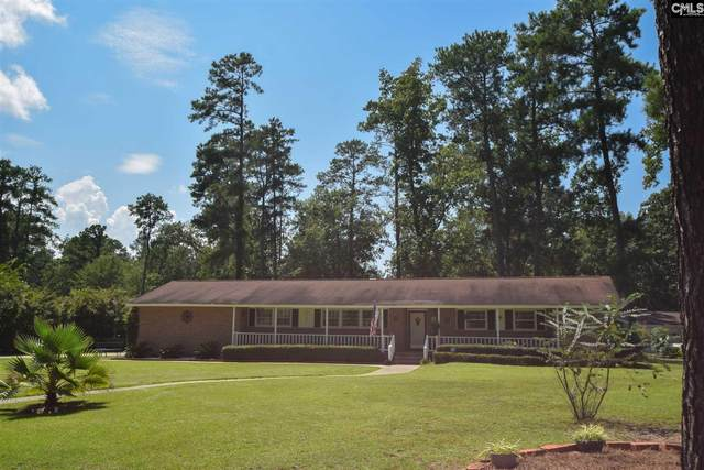 339 Townes Road, Columbia, SC 29210 (MLS #500146) :: NextHome Specialists